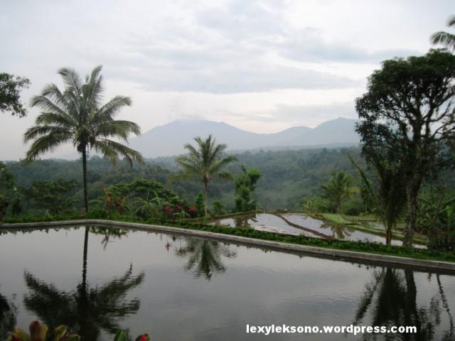 Pemandangan dari sisi kolam renang
