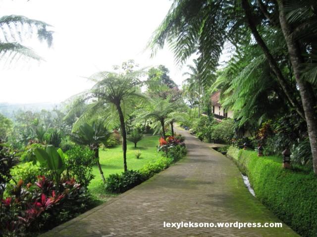 Jalanan memasuki kawasan Ijen Resort