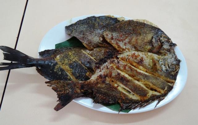 Ikan Baronang bergizi