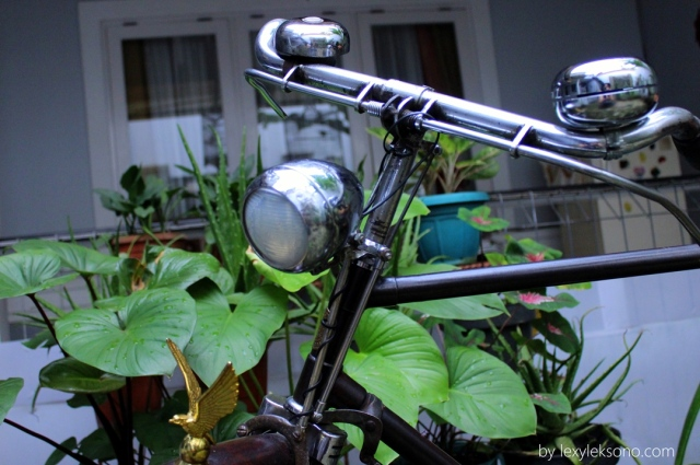 This is my photo model, a very old bike.