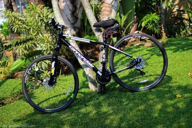 Pengin Gowes Lebih Leluasa Sepeda Hybrid Jadi Pilihanku Lexyleksono